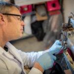 Repairing a sewing machine