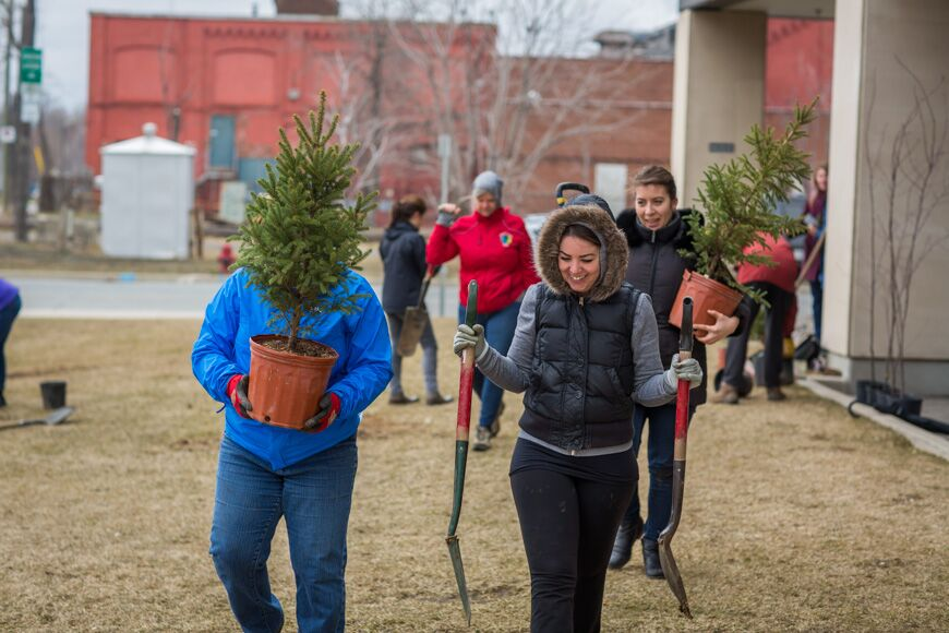 a group of volunteers carry trees across the lawn at Hamilton General Hospital