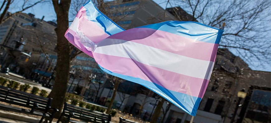 blue, pink and white striped trans flag