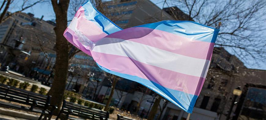 Trans Pride Flag