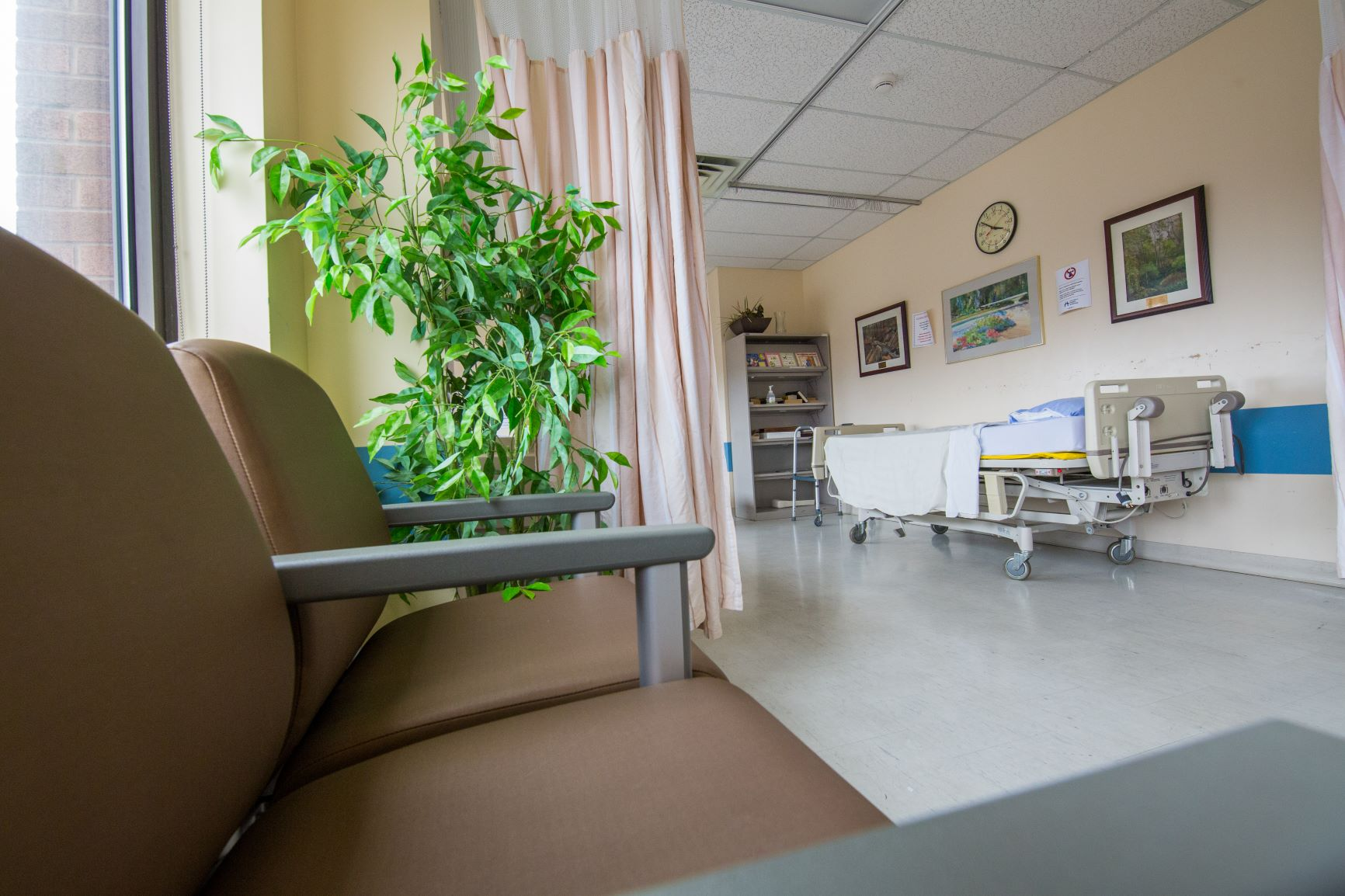 Empty waiting room with chairs and a plant