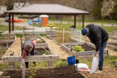 Ryan Duguay and Rachel Willard working in the community garden
